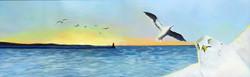 Seagull Selfie