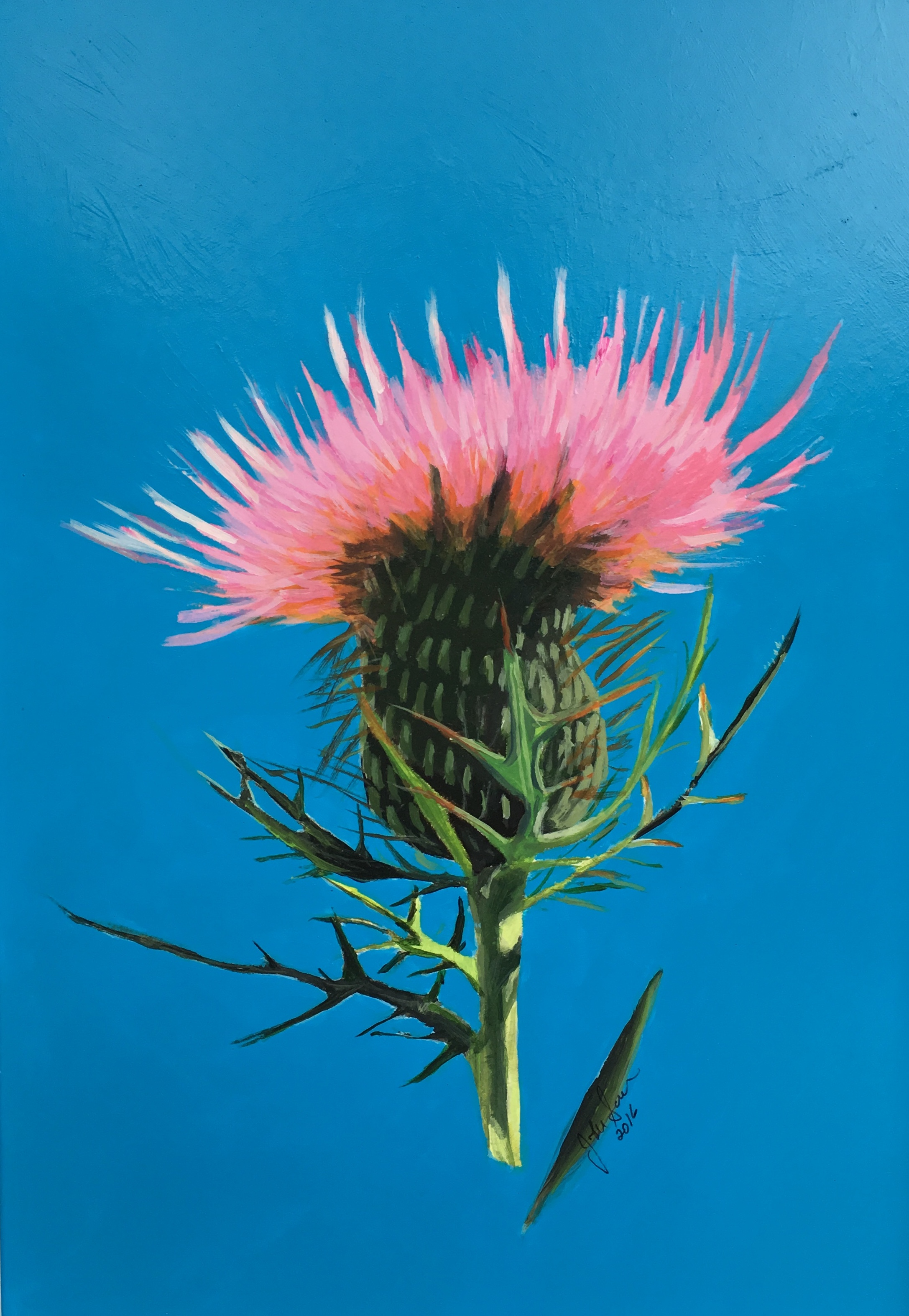Thistle on Blue