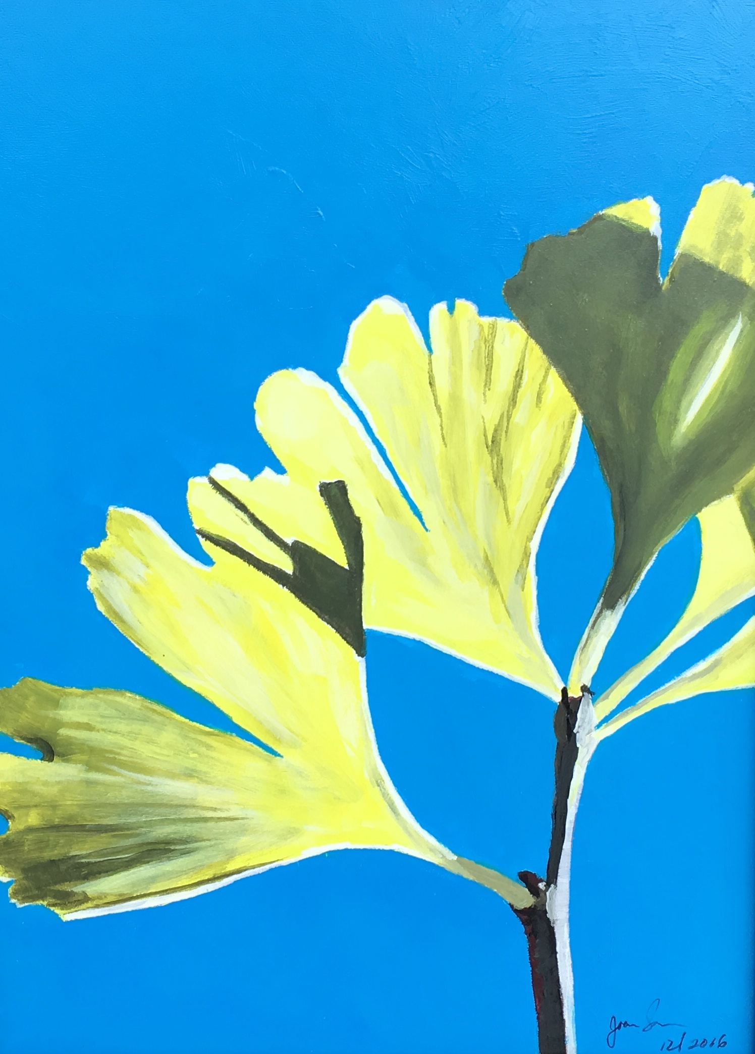 Ginko on Blue