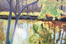 Autumn on the Menomonee