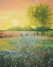 Sunrise Flax Field
