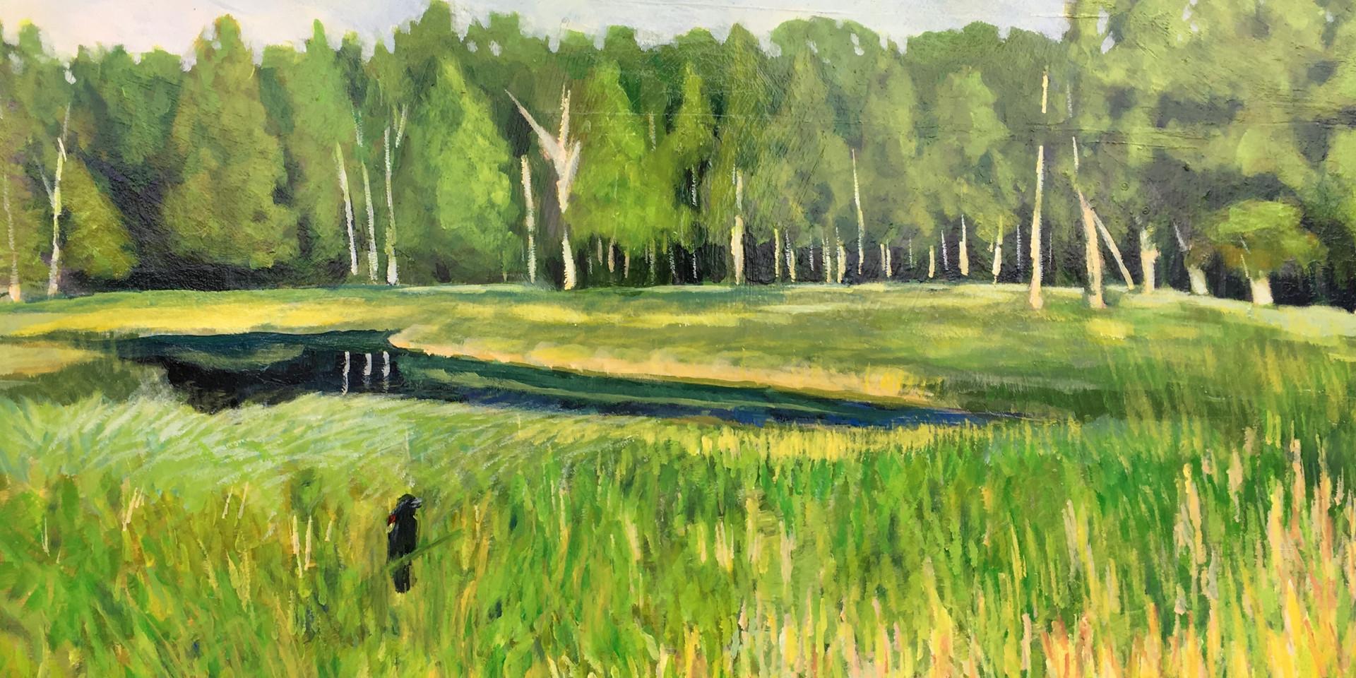 Weborg Marsh 2