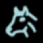 noun_Horse_1671312_edited.png