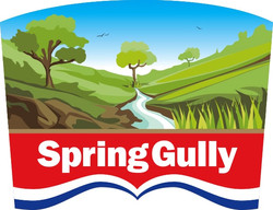 Spring Gully Food