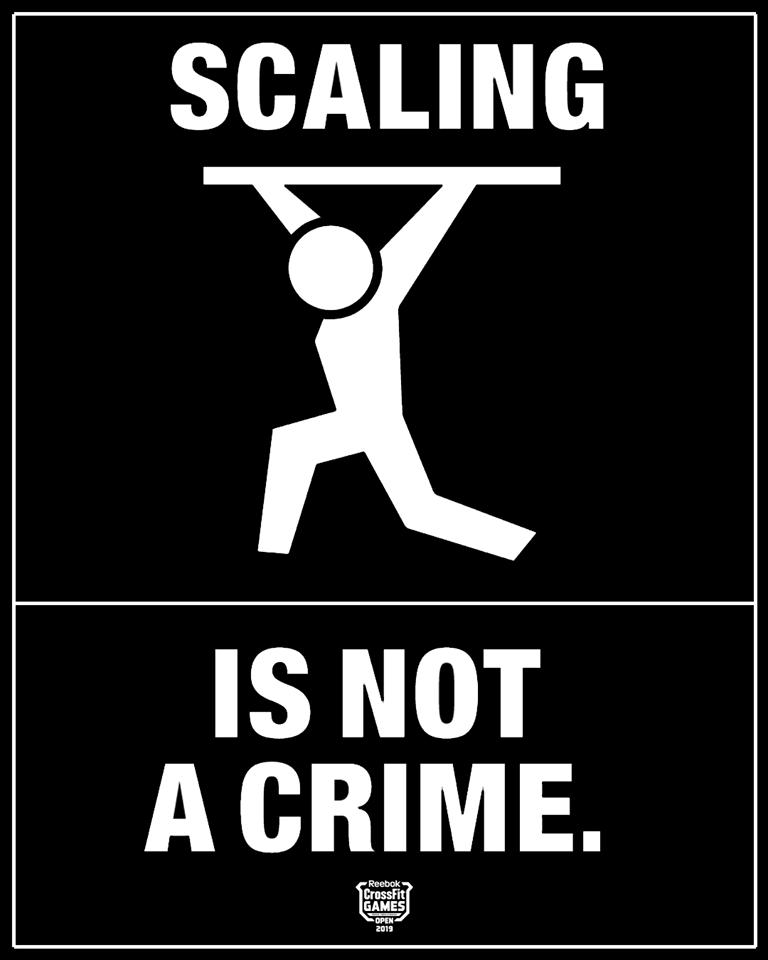 ser scale não é crime