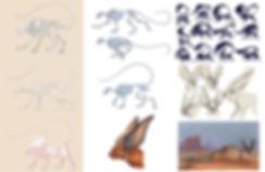 animal anatomy concept .jpg
