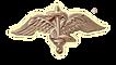 צנחנים, גיבוש צנחנים, גדוד 101, גדוד 202, גדוד 890