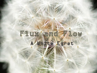 Flux and Flowアルバム『 A White Egret』リリース!!