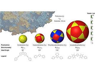 molecular capsule.jpg