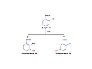 Salicylic acid.png