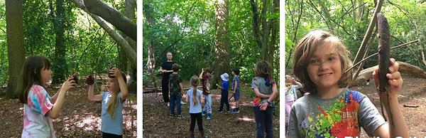 bigwood forest school.png