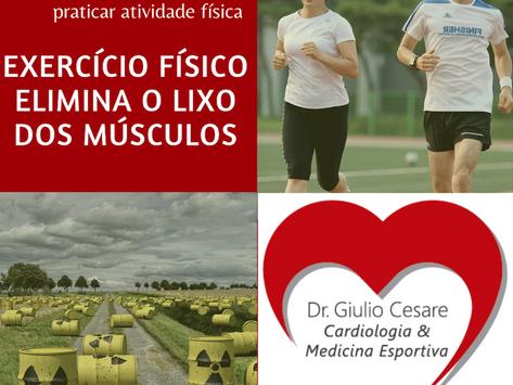 Exercício físico elimina proteínas tóxicas dos músculos