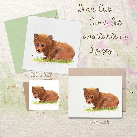 bearcub1header copy.jpg