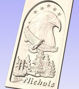 Nichols Eagle_edited.jpg