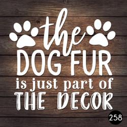 258 DOG