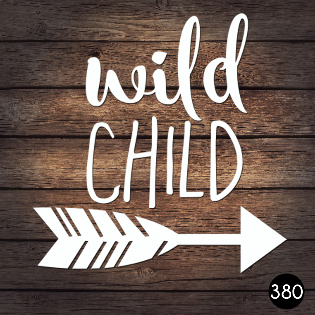380 WILD