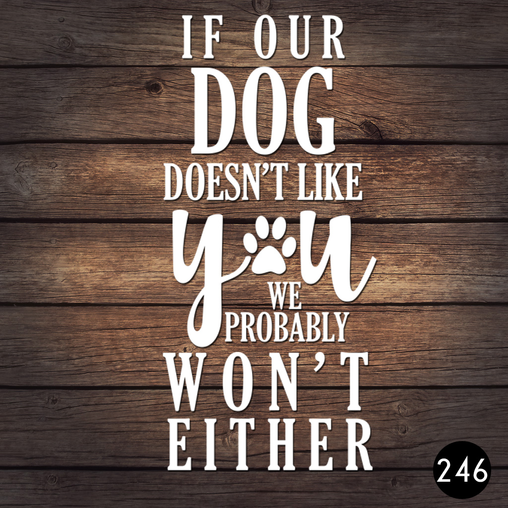 246 DOG