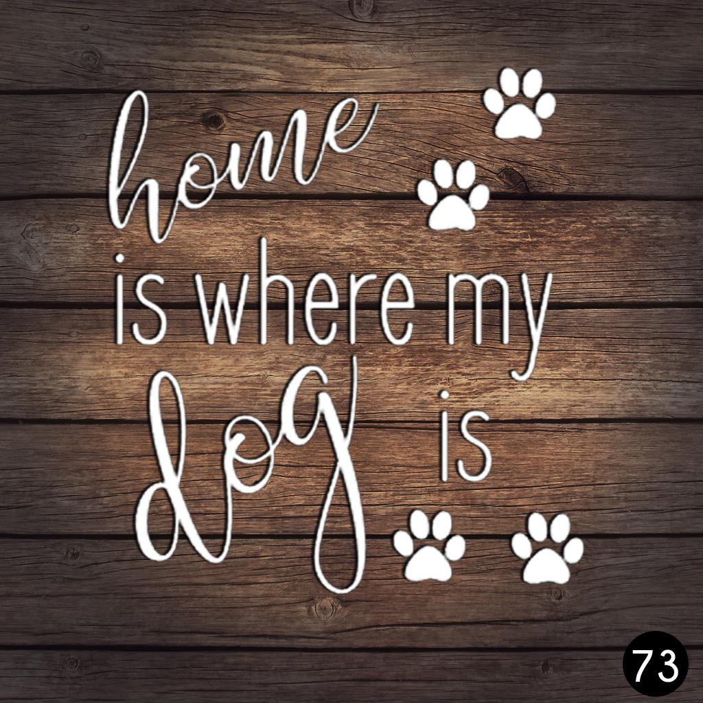 73 HOME DOG