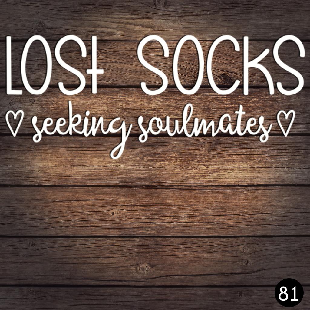 81 LOST SOCKS