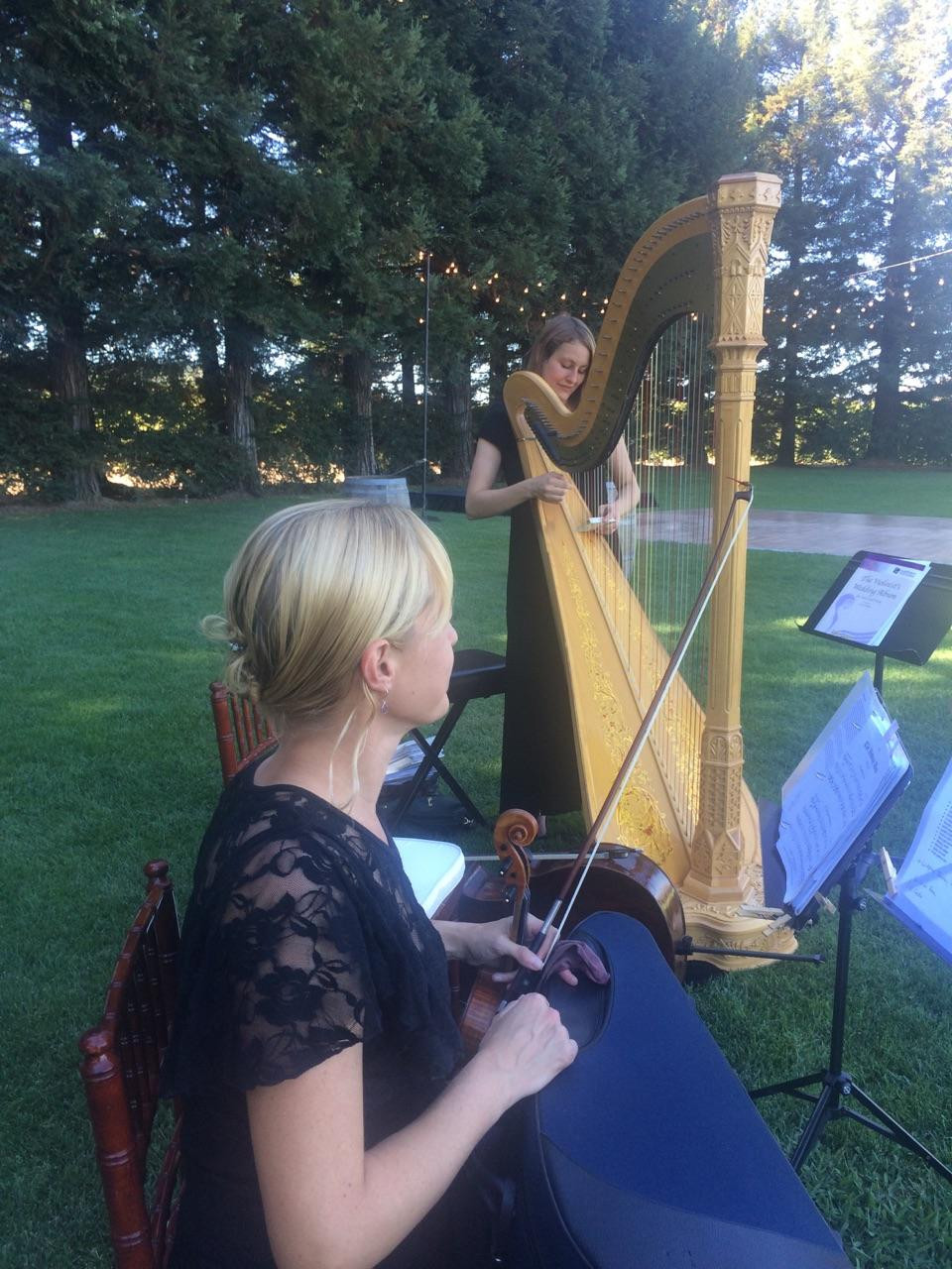 Winery Wedding Musicians, Violin and Harp