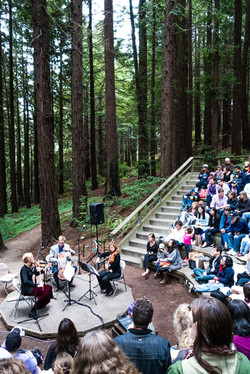 Chamber Music in the Redwoods