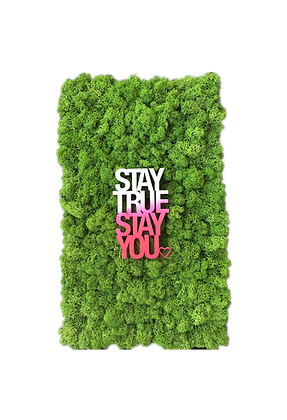 "Islandmoosbild ""Stay true"" 50x30 Grasgrün"