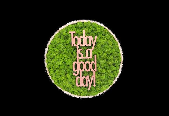 """Islandmoosbild """"Today is a good day"""" Ø40 Maigrün"""
