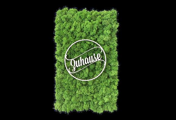 """Islandmoosbild """"Zuhause"""" 50x30 Grasgrün"""