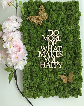 Moosbild do more of what makes you happy
