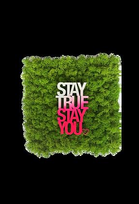 "Moosbild STRENZ INTERIOR ""Stay true stay you"""