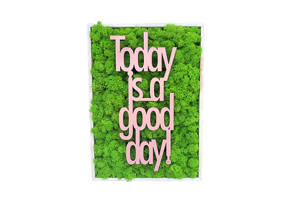 "Islandmoosbild ""Today is a good day"" 35x25x5.5 Maigrün"