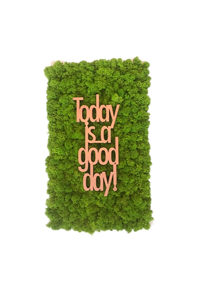 "Islandmoosbild ""Today is a good day"" 50x30 Maigrün"