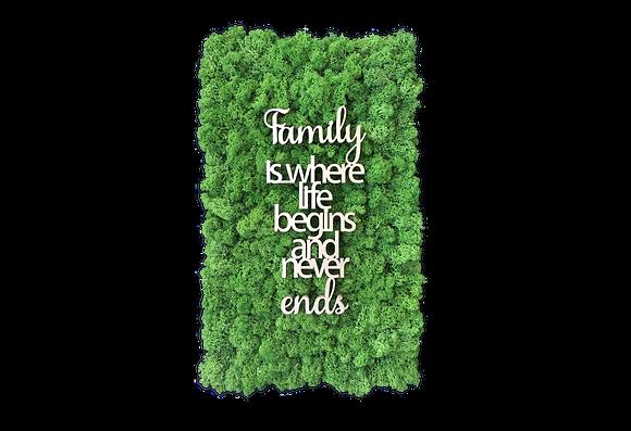 """Islandmoosbild """"Family"""" 50x30 Grasgrün"""