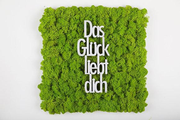 """Islandmoosbild """"Das Glück liebt Dich"""" 30x30 Maigrün"""