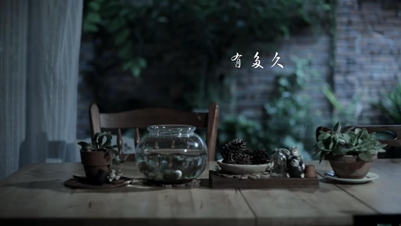 Danny 许佳麟 【有多久】Official MV