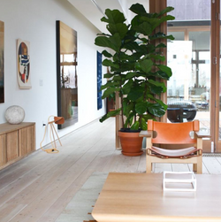The Plant Resort
