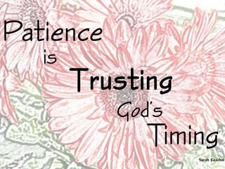 Friday Morning Inspiration - Patience!