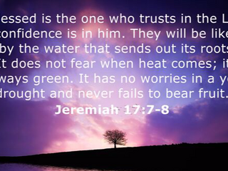Wednesday Morning Inspiration - Trust God!