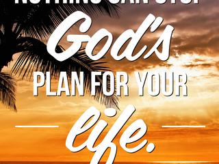 God's Plan!