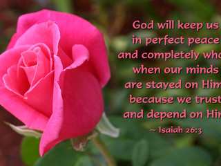 Trusting God Grants Us Peace!