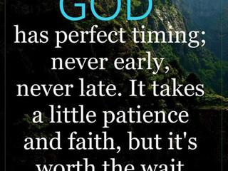 Saturday Morning Inspirational - Patience!