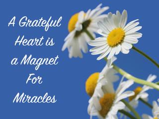 A Grateful Heart!