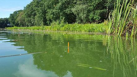 Fishing at Colehurst Lake