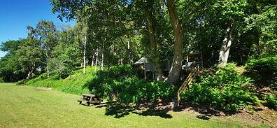 New woodland retreat 1.jpg
