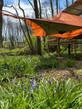 tree tent 2.jpg