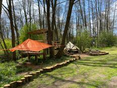 Tree tent 1.jpg