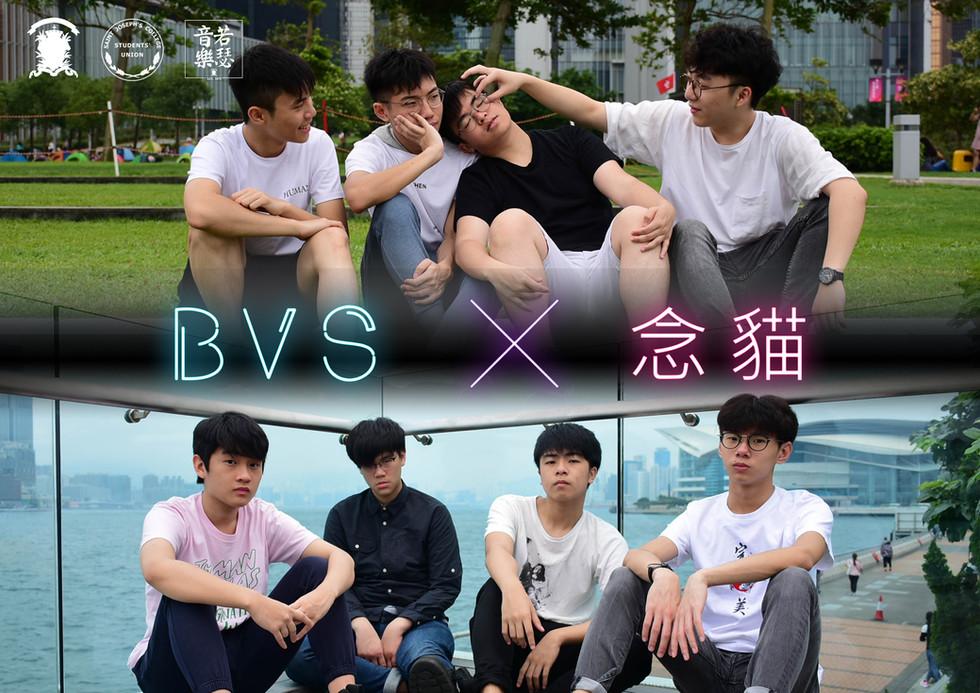 BVS vs 念貓.jpg