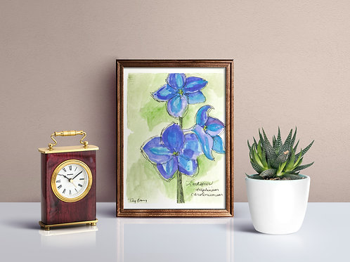 Larkspur Wildflower Print - Reproduced Print of Original Art ($8-$18)