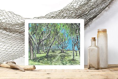 Ft. Fisher Trees - Reproduced Print of Original Artwork ($8-$18)