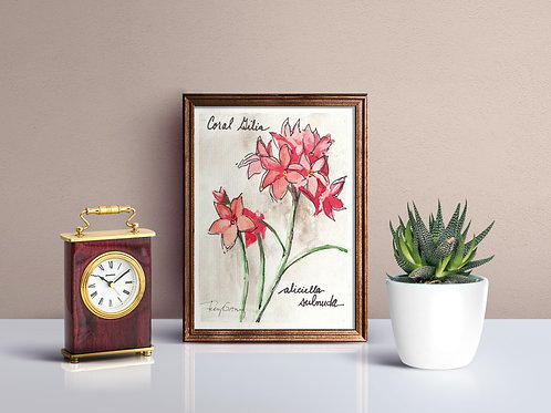 Coral Gilia Wildflower Print - Reproduced Print of Original Art ($8-$18)